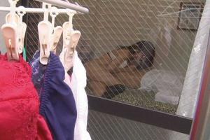 ベランダ盗撮エロ画像21枚!カーテンを開けたまま着替えやセックスは要注意wwwのサムネイル画像
